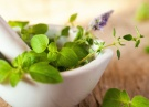 Approach a Naturopath in Adelaide for Your Heal...